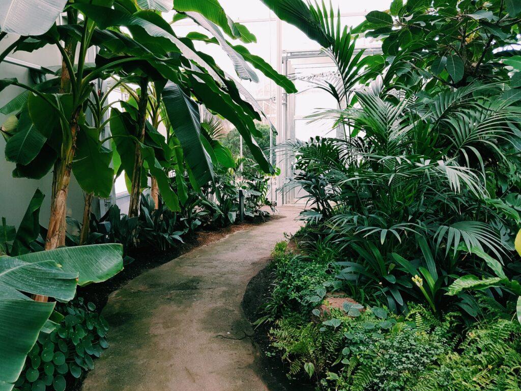 garden Treviso